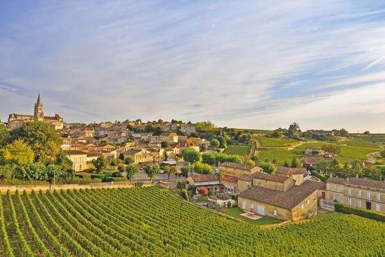 Vignoble à Saint-Emilion © OT St-Emilion_Heurisko