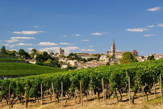 Vignobles de Saint-Emilion