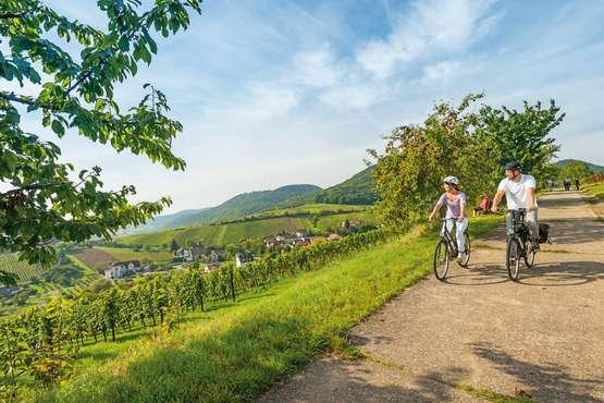 © Dominik Ketz - Rheinland-Pfalz Tourismus GmbH