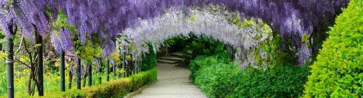 Merveilleux jardins florentins