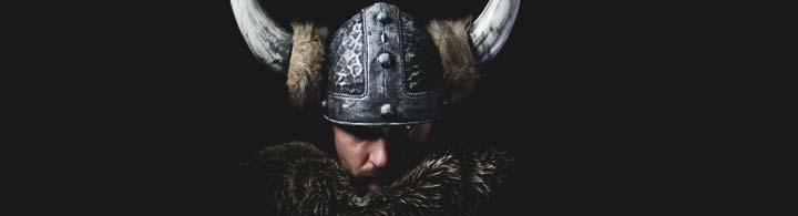 Vikingaliv oder das Leben der Wikinger