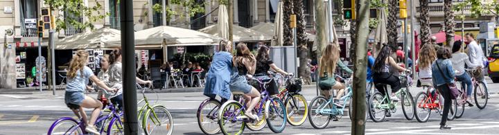 Tour à vélo (3h)