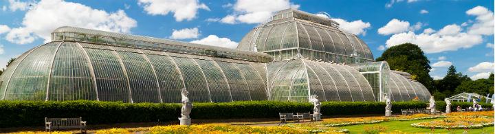 Kew Gardens: Wiedereröffnung von Temperate House