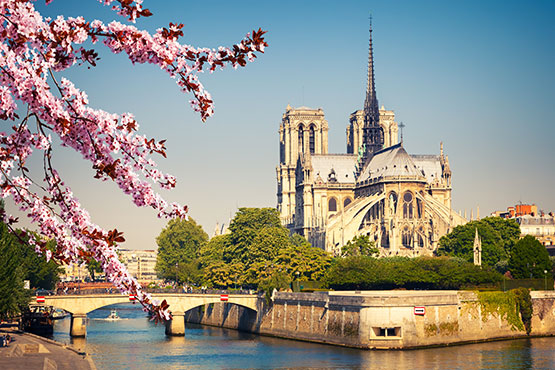 PARIS - TOP DESTINATION