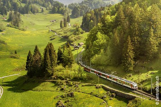 Grand Train Tour – <br/>glaciers & palmiers<br/>