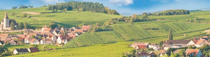 Strassburg – Bonjour Elsass