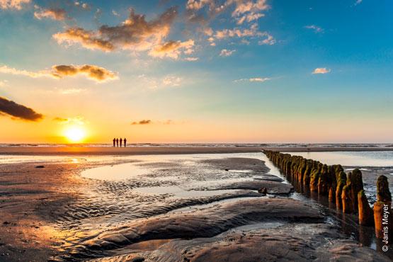Nordsee Pur – </br>für Naturliebhaber