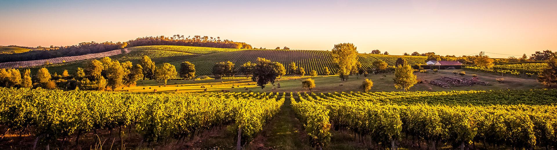 Bordeaux-Weingebiet – Rundreise mit dem Auto