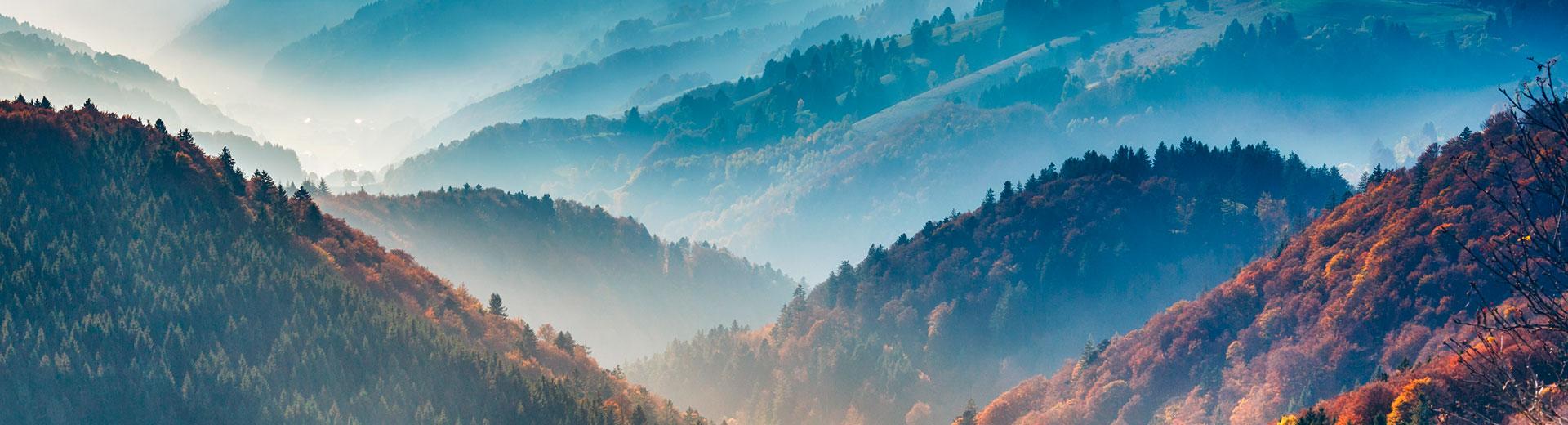 Wohlfühlen im Schwarzwald