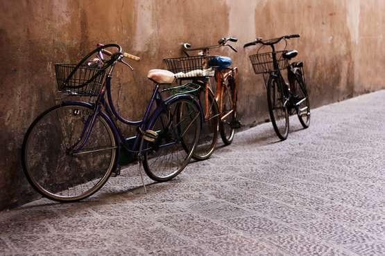 Visite guidée en vélo