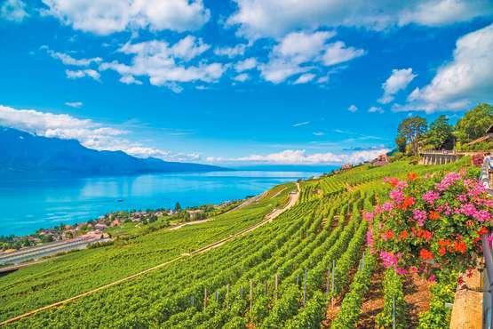Free public transport – Montreux