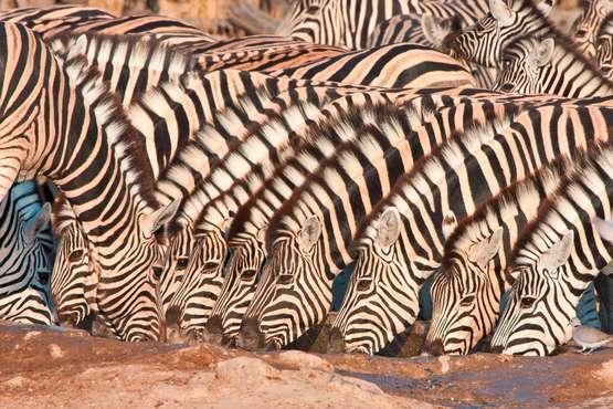 Juwel der Wüste Namibia – Kapstadt