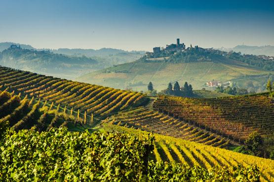 Kleingruppenreise Piemont