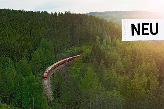 Norwegens Fjord-Bahnerlebnis