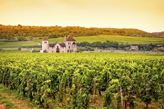 Schon nach kurzer Anreisezeit aus der Schweiz kriegt man in Dijon ein ausgewachsenes Stück an französischem Savoir Vivre serviert.