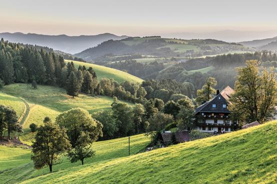 Bahnreisen Baden-Württemberg: Schwarzwaldbahn